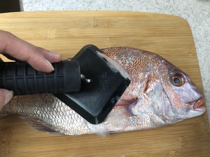 真鯛ウロコ取り3